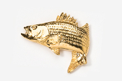 #207AG - Jumping Striper / Striped Bass 24K Gold Plated Pin