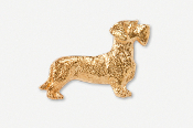 #462BG - Wire Hair Dachshund 24K Gold Plated Pin