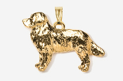 #P872G - Bernese Mountain Dog 24K Gold Plated Pendant