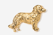 #884G - Nova Scotia Duck Toller 24K Gold Plated Pin