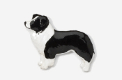 #854P-BW - Border Collie Hand Painted Pin