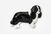 #455CP-BW - Cavalier King Charles Hand Painted Pin