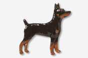 #877CP-BT - Rat Terrier Hand Painted Pin