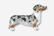 #462P-DD - Smooth Dachshund Hand Painted Pin