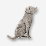 #D45010 - Labrador Retriever (right) Pewter Drawer Pull