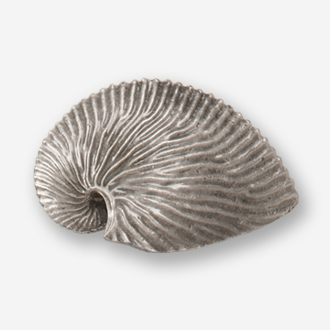 "#D54920 - Nautilus Shell 2.5"" (left) Pewter Drawer Pull"