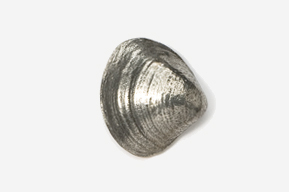 #540 - Clam Antiqued Pewter Pin