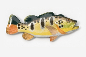 #145P - Peacock Bass Hand Painted Pin