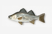 #165P - Hybrid Striper Hand Painted Pin