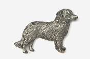 #884 - Nova Scotia Duck Toller Antiqued Pewter Pin