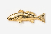 #227G - Redfish / Red Drum 24K Gold Plated Pin