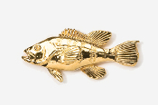 #229G - Sea Bass 24K Gold Plated Pin