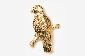 #357G - Amazon Parrot 24K Gold Plated Pin