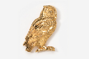 #362G - Screech Owl 24K Gold Plated Pin