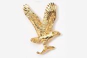#366G - Osprey 24K Gold Plated Pin