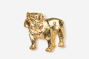 #463AG - Bulldog 24K Gold Plated Pin