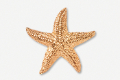 #539CG - Large Starfish 24K Gold Plated Pin