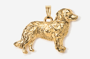 #P884G - Nova Scotia Duck Toller 24K Gold Plated Pendant