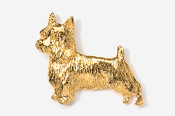 #874G - Silky Terrier 24K Gold Plated Pin