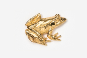 #590G - Frog 24K Gold Plated Pin