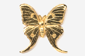 #571G - Luna Moth 24K Gold Plated Pin
