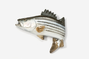 #207AP - Jumping Striper / Striped Bass Hand Painted Pin