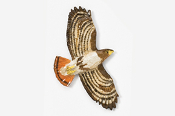 #368P - Flying Hawk Hand Painted Pin