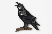 #377P - Crow / Raven Hand Painted Pin