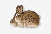 #412AP - Rabbit Family Hand Painted Pin