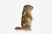 #415P - Woodchuck Hand Painted Pin