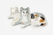 #439AP - Cat & Kittens Hand Painted Pin