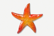 #539CP - Large Starfish Hand Painted Pin