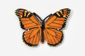 #572P - Monarch Butterfly Hand Painted Pin