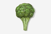 #681P - Broccoli Hand Painted Pin