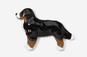 #872P - Bernese Mountain Dog Hand Painted Pin