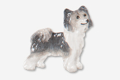 #880AP-GW - Powder Puff Chinese Crested Hand Painted Pin