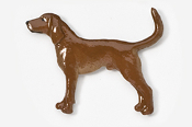#453BP-RB - Coon Hound Hand Painted Pin