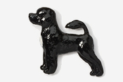 #864P-BW - Portuguese Water Dog Hand Painted Pin