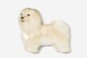 #882P-F - Havanese Hand Painted Pin