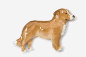 #884P-DN - Nova Scotia Duck Toller Hand Painted Pin