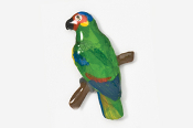 #357P-RL - Red-lored Amazon Parrot Hand Painted Pin