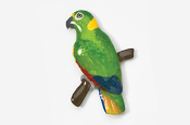 #357P-YN - Yellow-naped Amazon Parrot Hand Painted Pin