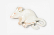 #419AP-A - Albino House Mouse Hand Painted Pin