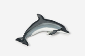 #475P-A - Atlantic White-sided Dolphin Hand Painted Pin