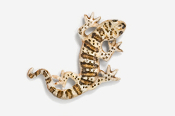 #616P-BR - Brown Gecko Hand Painted Pin