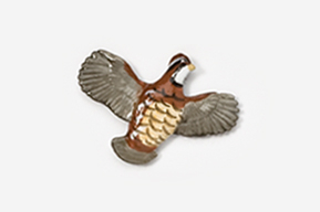 #329P - Open Wing Flying Bobwhite Hand Painted Pin