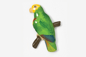 #357P-YH - Yellow Headed Amazon Parrot Hand Painted Pin