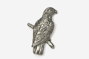 #358 - African Grey Parrot Antiqued Pewter Pin