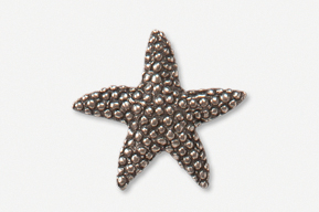 #539B - Medium Starfish Antiqued Pewter Pin