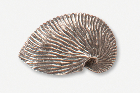 #549 - Nautilus Shell Antiqued Pewter Pin